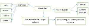 Mapa conceptual de mamíferos