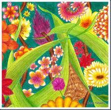 tecnica Lápices de colores